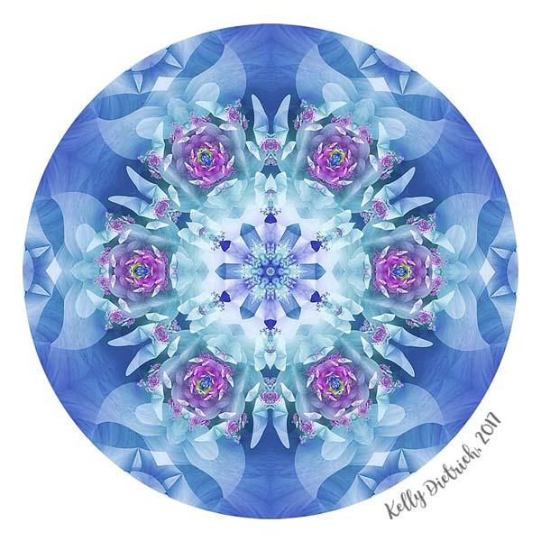 Royal Blue and Pink Mandala