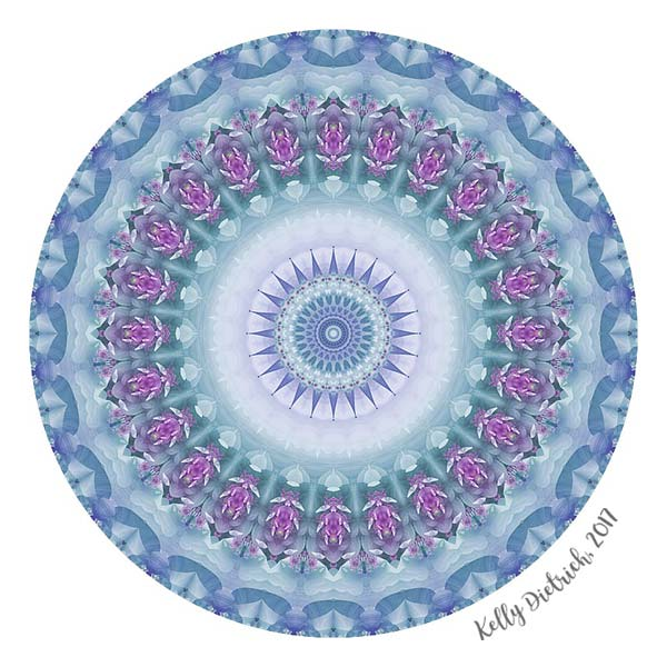 Violet Flowers Mandala