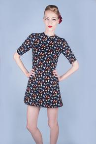 HummingBird Party Dress