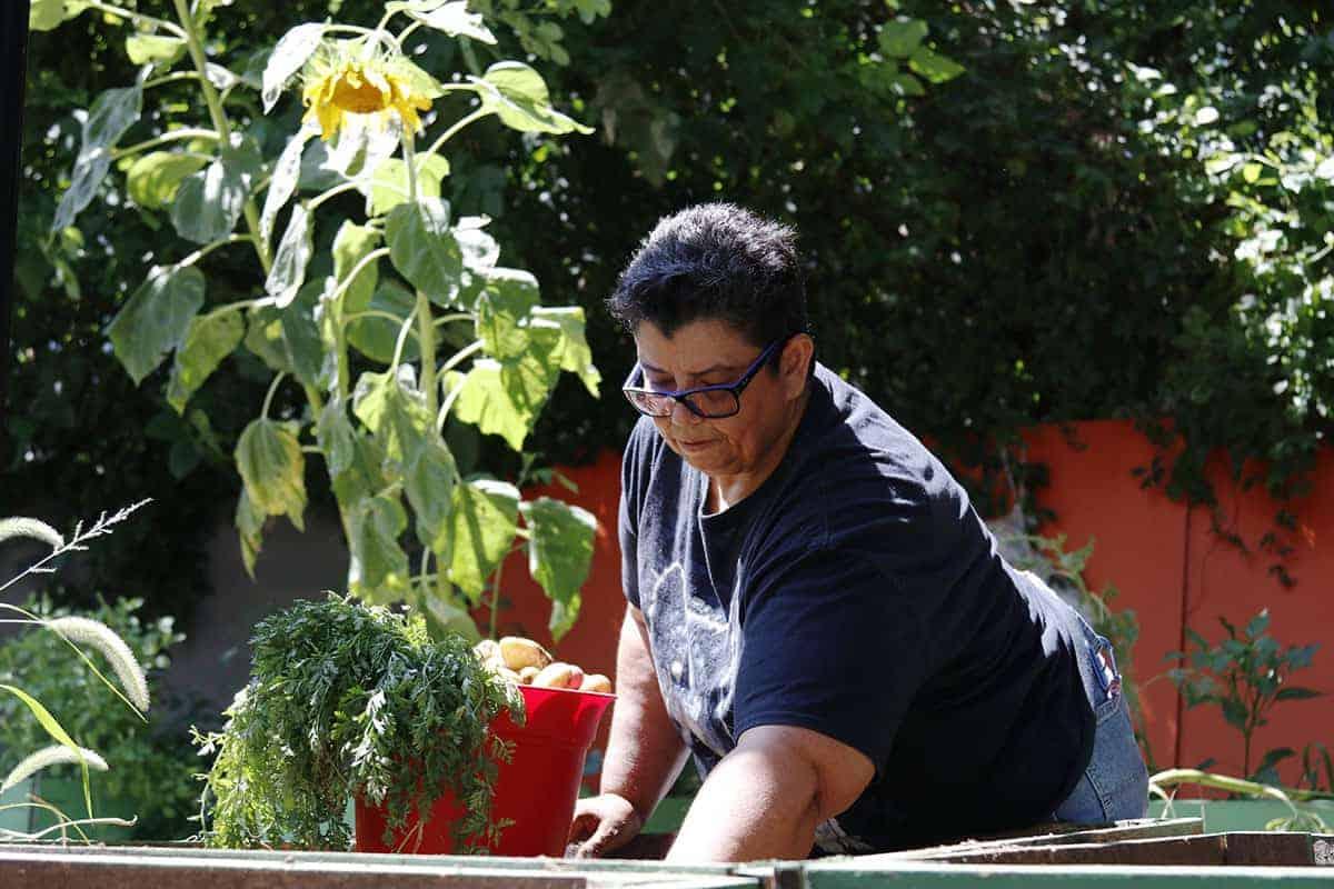 Ana Edible Alphabet Gardening