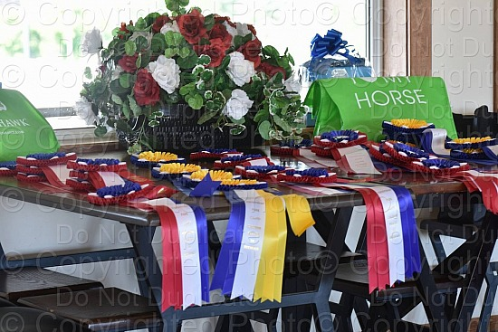 Caledon Salute to Dressage 2019