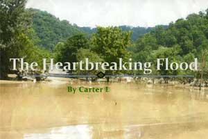 The Heartbreaking Flood cover art