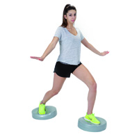 Gymnic Stability Wheel