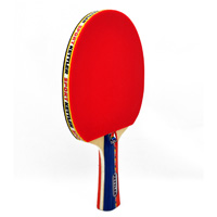GTX 55 Table Tennis Paddle Two-Player Set