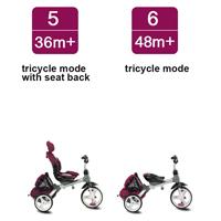 6-in-1 Stroller Trike