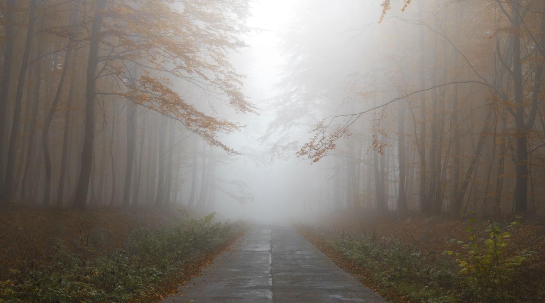 Walking Home Together - Chaplain Mike Mercer video thumbnail