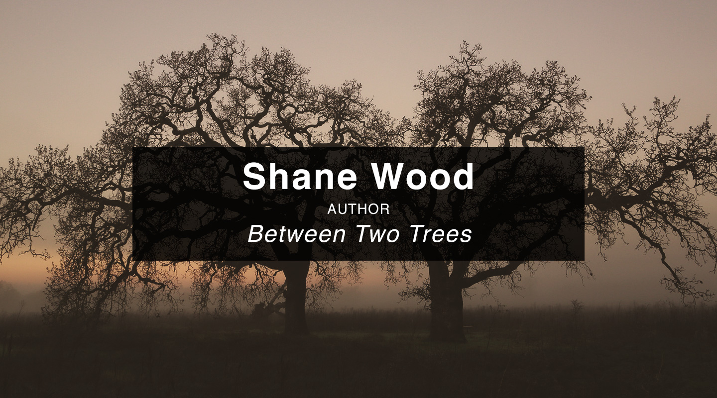Shane J. Wood - Between Two Trees