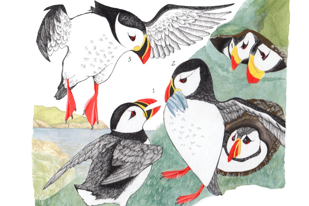 Social Media Mapping Project Takes Flight with Avian Avatars
