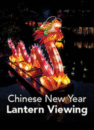 2019 Chinese New Year Lantern Viewing Evenings