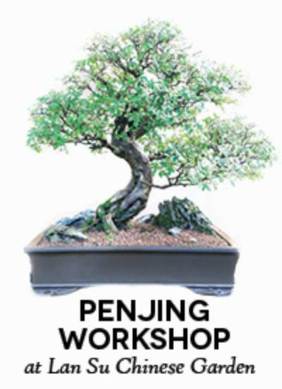 Hands On Penjing Workshop with Robert Cho of Asia Pacific Gardening