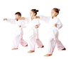 Get your young children in martial arts classes.