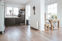 PhilipsvanWassenaerlaan Kitchen
