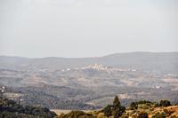 AlGelsoBianco SM 6