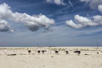 DouglasRoad Beach