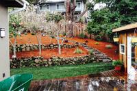 BuchananResidence Garden