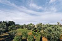 PatrigoneResidence Gardens