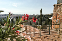SanGiovannid'Asso Terrace02