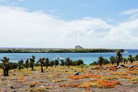 GalapagosSafari Water