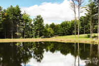 LoomisRoad Lake