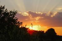 PiantoniVilla Sunset