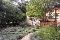 HomesteadLane Garden