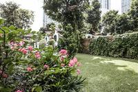 GrantStreet Garden2