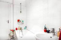 MeslayBathroom01