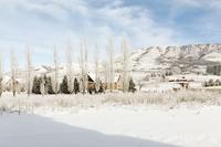 Sierra_Landscape