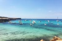 RocaLlisa_Coast