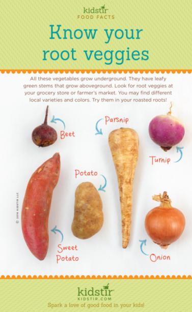 What Are Root Vegetables Kidstir