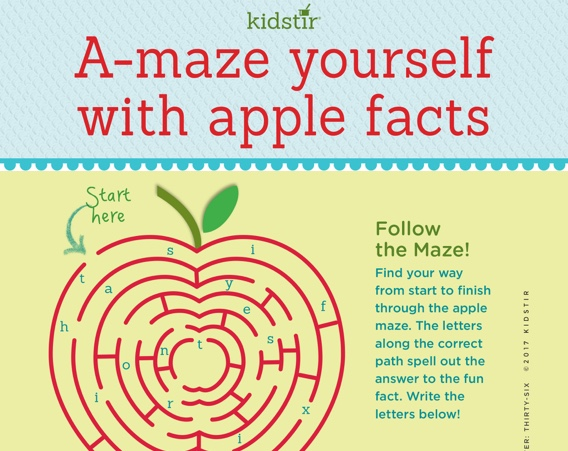 Apple Infographic for Kids