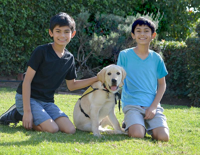 How Pets Teach Kids Responsibility