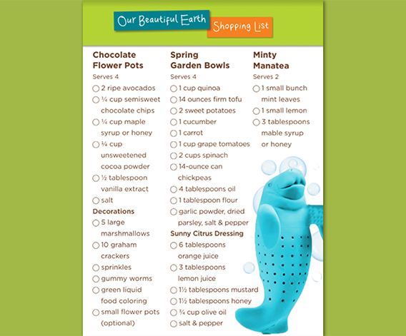Our Beautiful Earth Shopping List