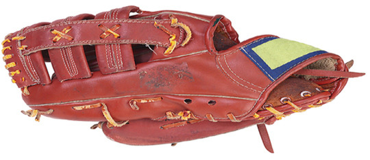 Feature softball glove article