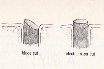 blade vs electric