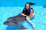 Preview dolphintrainer preview