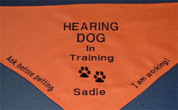 Hearing Dogs Help People Who Are Hearing Impaired