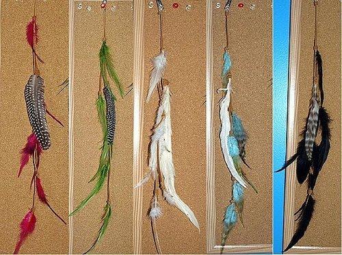 Samii's feather inspiration