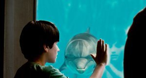 Nathan in Dolphin Tale