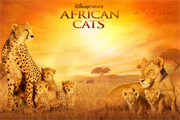 Preview african cats preview