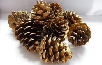 Why not make decorations out of things you find in nature!