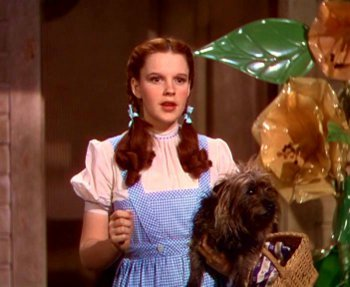 Dorothy never doubts that she can find the root of a problem