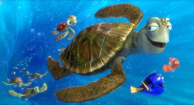 Turtle buddies