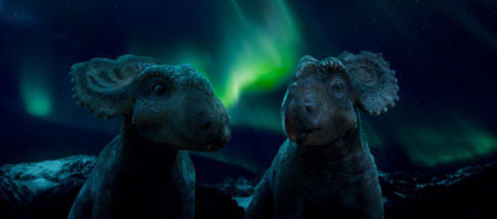 Patchi and Juniper share a Northern Lights moment