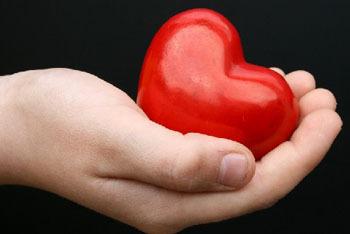The Lowdown: Organ Donation
