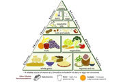 Preview food pyramid pre