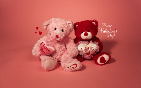 Valentine's has become a holiday for all kinds of love