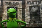 Preview muppets most wanted blu ray pre