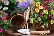 Preview gardening pre