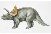 Preview triceratops pre